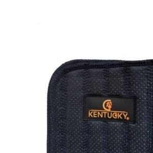 Kentucky benpaddar absorb 2