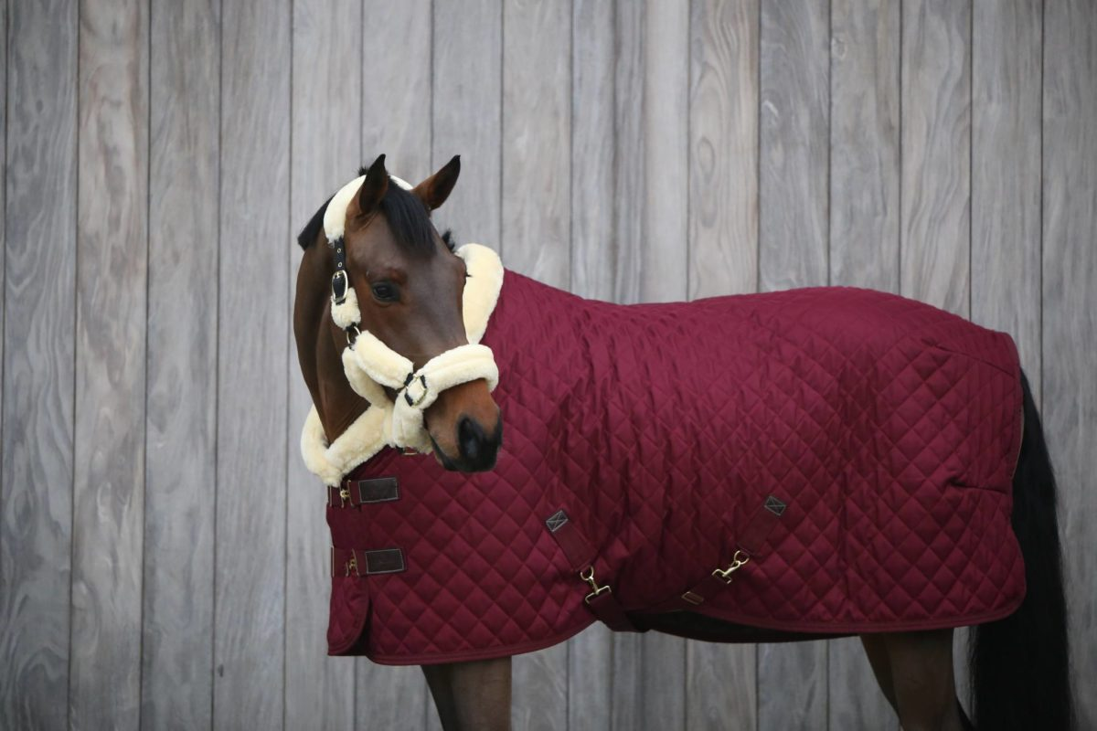 Kentucky Show Rug Limited Edition