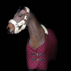 Kentucky Horsewear stable rug limited edition