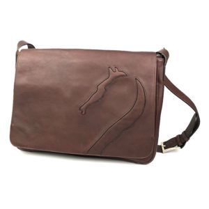 Antares messenger bag