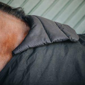 Kentucky täckeskrage skydd för manken