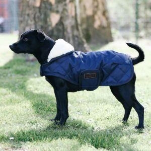 Kentucky dogwear hundtäcke original mörkblått
